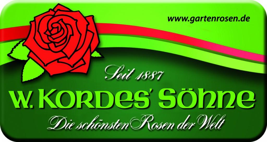 Kordes Rosen